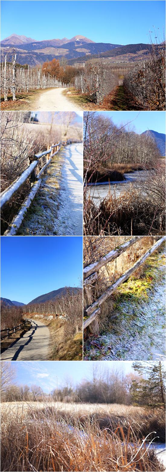 8_sentiero-collage